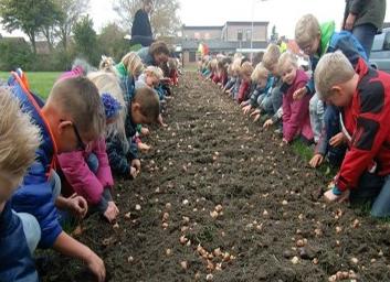 kids planting bee mix copy
